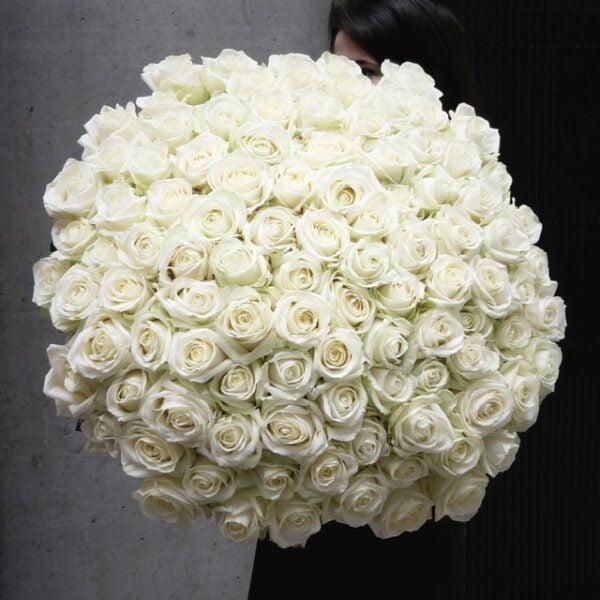 Bukiet 101 białej róży