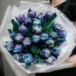 Kosmiczne tulipany