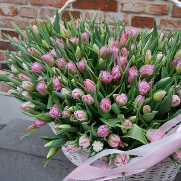 Kosz tulipanów