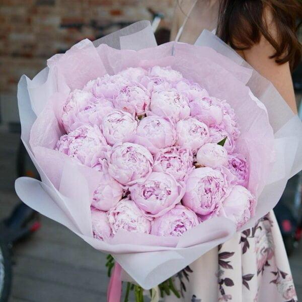 Różowe piwonie