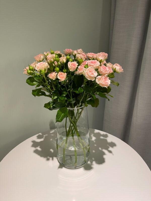Set z różą gałązkową